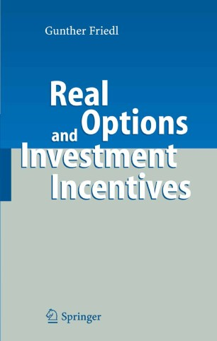 Real options and investment llc