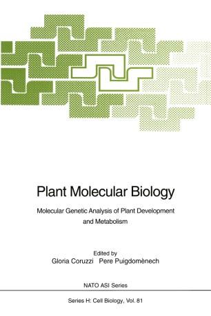 Plant Molecular Biology: Molecular Genetic Analysis of Plant Development and Metabolism