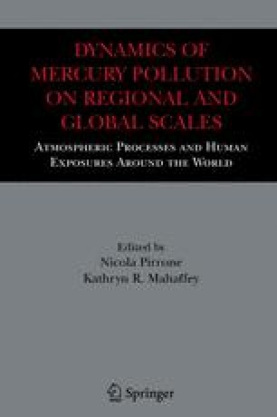 Dynamics of Mercury Pollution on Regional and Global Scales: