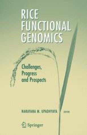 Rice Functional Genomics