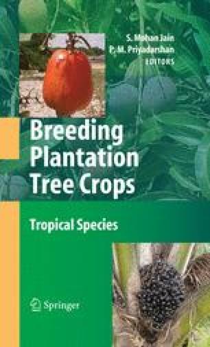 Breeding Guava ( Psidium guajava L ) | SpringerLink
