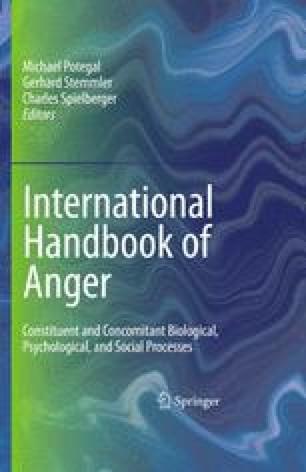 International Handbook of Anger