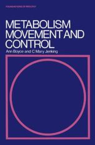 Metabolism, movement and control