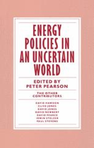 Energy Policies in an Uncertain World