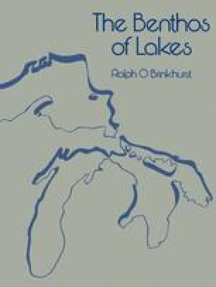 The Benthos of Lakes