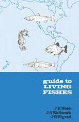 Guide to Living Fishes