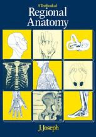 A Textbook of Regional Anatomy