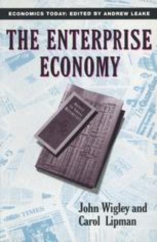 The Enterprise Economy