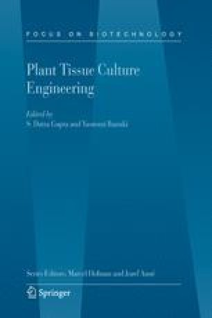 Plan Tissue Culture Engineering