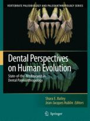 Dental Perspectives on Human Evolution: State of the Art Research in Dental Paleoanthropology