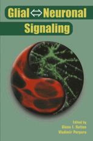 Glial ⇔ Neuronal Signaling