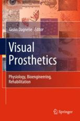 Visual Prosthetics