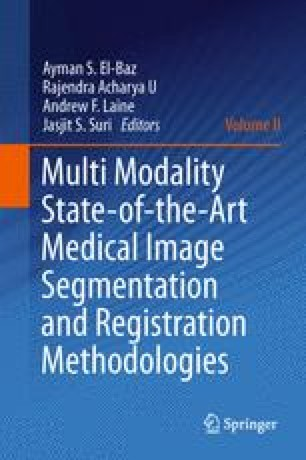 Multi Modality State-of-the-Art Medical Image Segmentation and Registration Methodologies