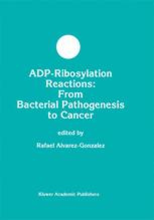 ADP-Ribosylation Reactions: From Bacterial Pathogenesis to Cancer