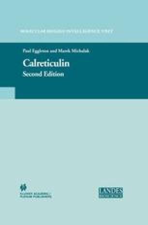 Calreticulin