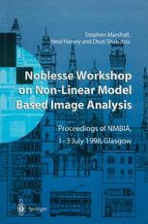 Noblesse Workshop on Non-Linear Model Based Image Analysis