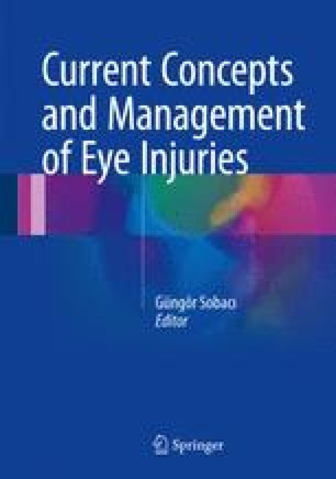 Severe Eye Injuries: Identification, Clinical Impact, and
