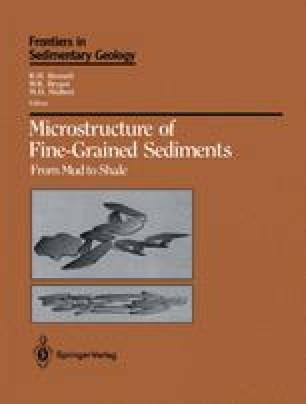 Microstructure of Fine-Grained Sediments