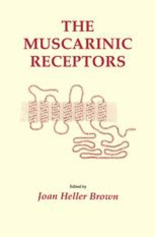The Muscarinic Receptors