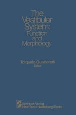 The Vestibular System: Function and Morphology