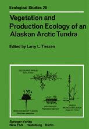 Vegetation and Production Ecology of an Alaskan Arctic Tundra