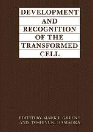Development and Recognition of the Transformed Cell