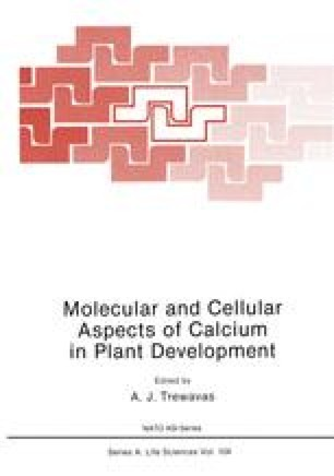 Molecular and Cellular Aspects of Calcium in Plant Development