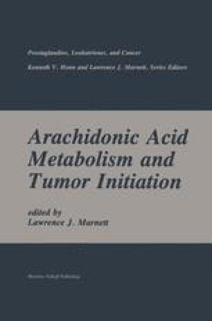 Arachidonic Acid Metabolism and Tumor Initiation