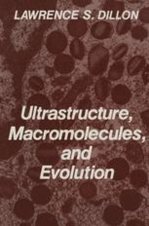Ultrastructure, Macromolecules, and Evolution