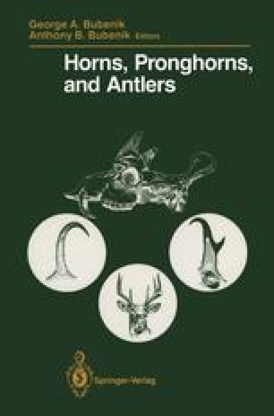 Horns, Pronghorns, and Antlers