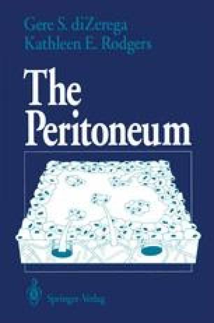 The Peritoneum