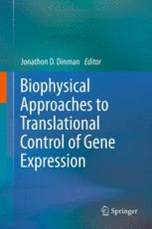 Biophysical approaches to translational control of gene expression