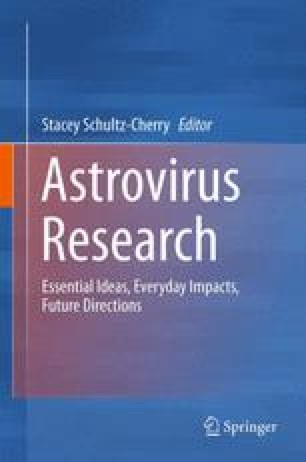 Astrovirus | definition of Astrovirus by Medical dictionary