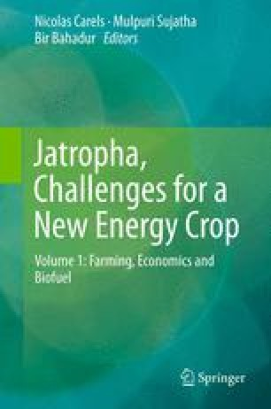 Jatropha curcas Biodiesel, Challenges and Opportunities: Is it a ...