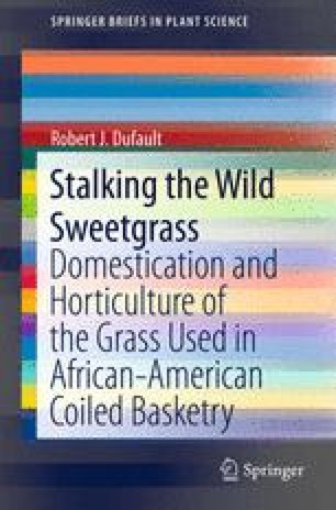 Stalking the Wild Sweetgrass