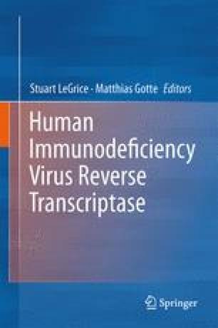 Human Immunodeficiency Virus Reverse Transcriptase