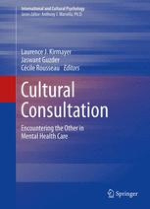 Gender, Power and Ethnicity in Cultural Consultation