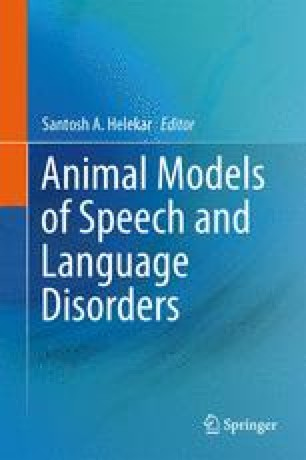 Animal Models of Speech and Language Disorders