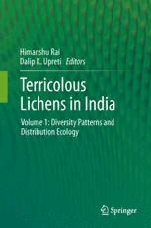Terricolous Lichens in India