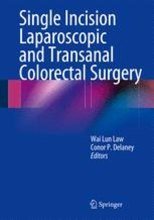 Single Incision Laparoscopic and Transanal Colorectal Surgery
