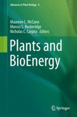 Plants and BioEnergy