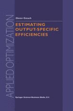 Estimating Output-Specific Efficiencies