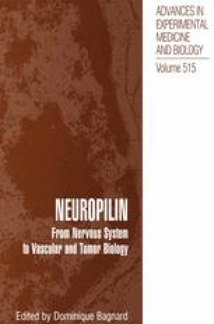 Neuropilin: From Nervous System to Vascular and Tumor Biology