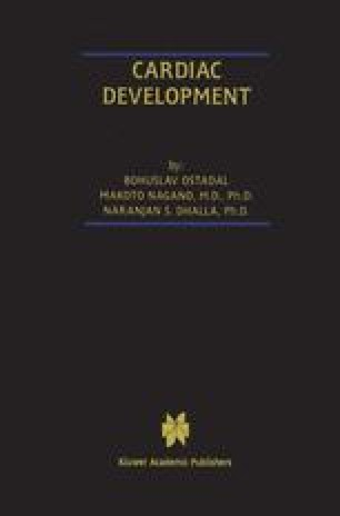 Cardiac Development
