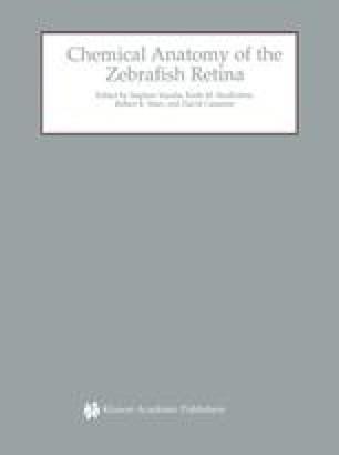 Chemical Anatomy of the Zebrafish Retina