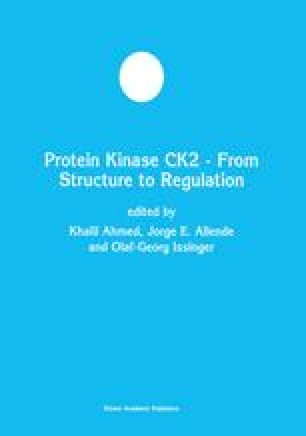 Protein Kinase CK2 — From Structure to Regulation