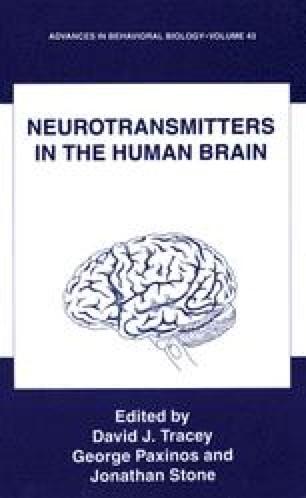 Neurotransmitters in the Human Brain