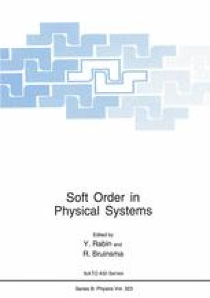 Soft Order in Physical Systems
