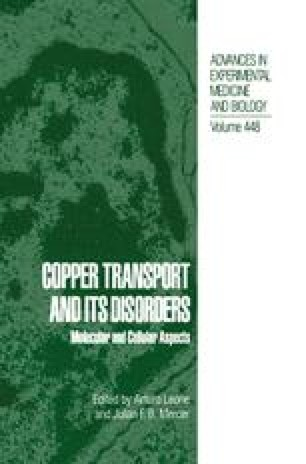Intracellular Pathways of Copper Trafficking in Yeast and