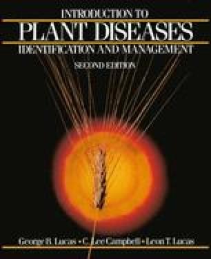Diseases Caused by Airborne Fungi | SpringerLink